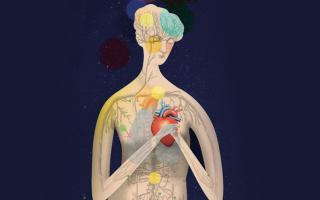Проблемы с сердцем у детей и взрослых с точки зрения психосоматики