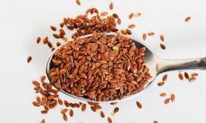 Можно ли употреблять семена льна при беременности?
