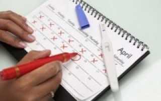 Отсчет дней после зачатия: когда тест может показать беременность?