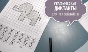 """Графический диктант """"Носорог"""""""