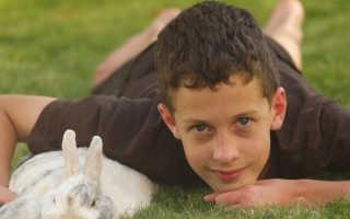 Аллергопробы для детей и их виды