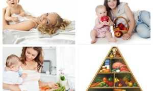 Доктор Комаровский о меню кормящей мамы по месяцам