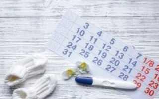 Календарь планирования беременности по овуляции и калькулятор расчета
